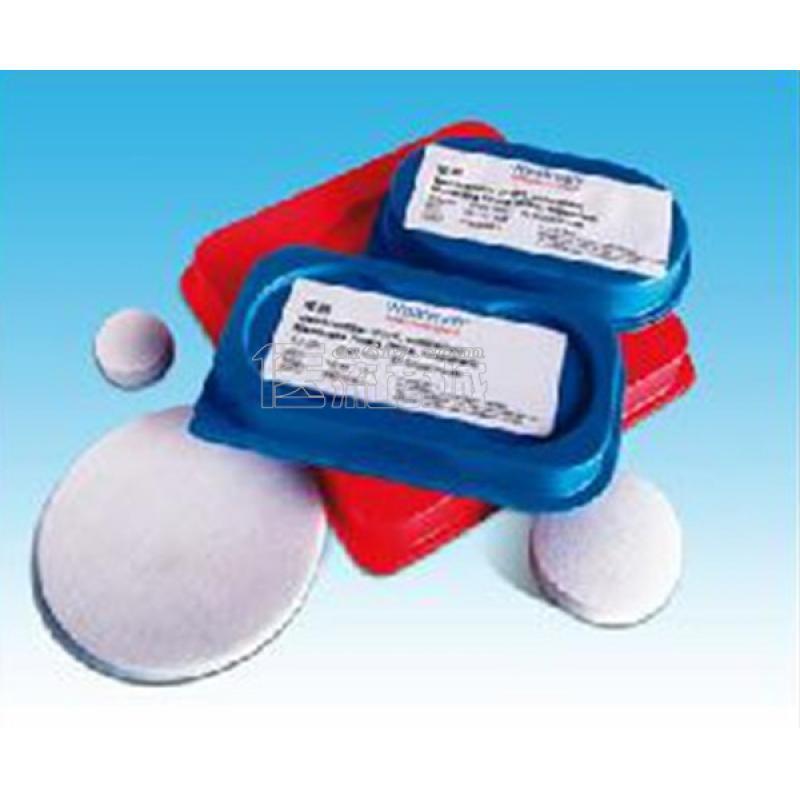 Whatman 10401712 Φ47*0.2um 混合纤维素酯膜 100片/盒
