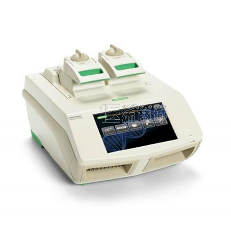 伯乐 C1000梯度PCR仪