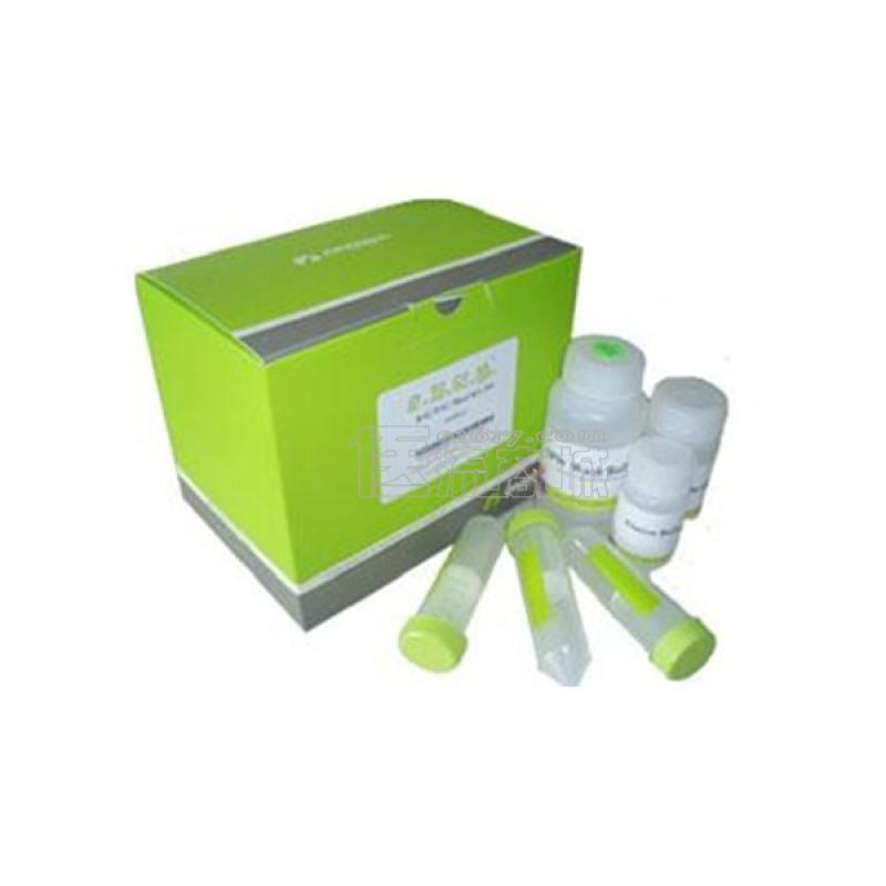 DAB Kit DAB显色试剂盒 60ml