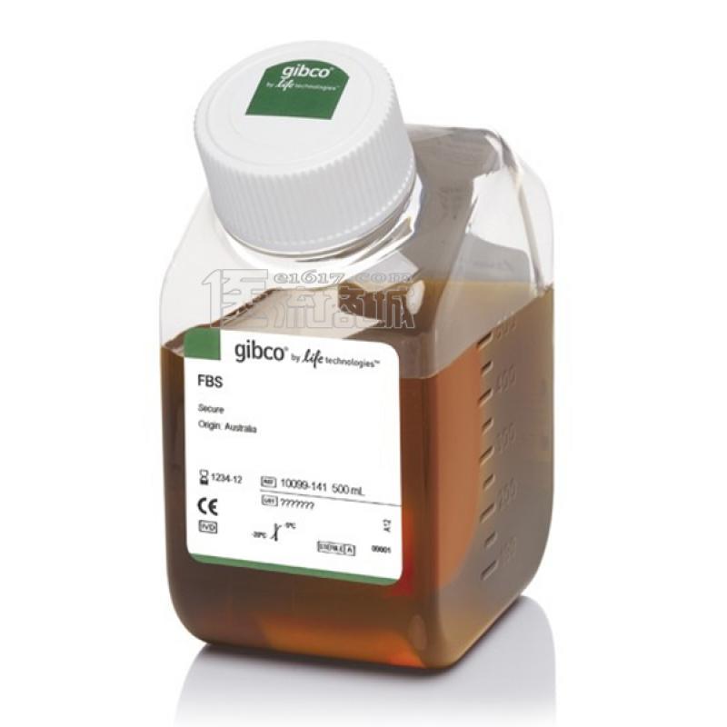 Gibco 澳洲胎牛血清 500ml 10099-141