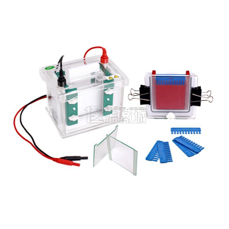 君意JY-SCZ4+(新产品)双垂直电泳槽 4块胶 60个样