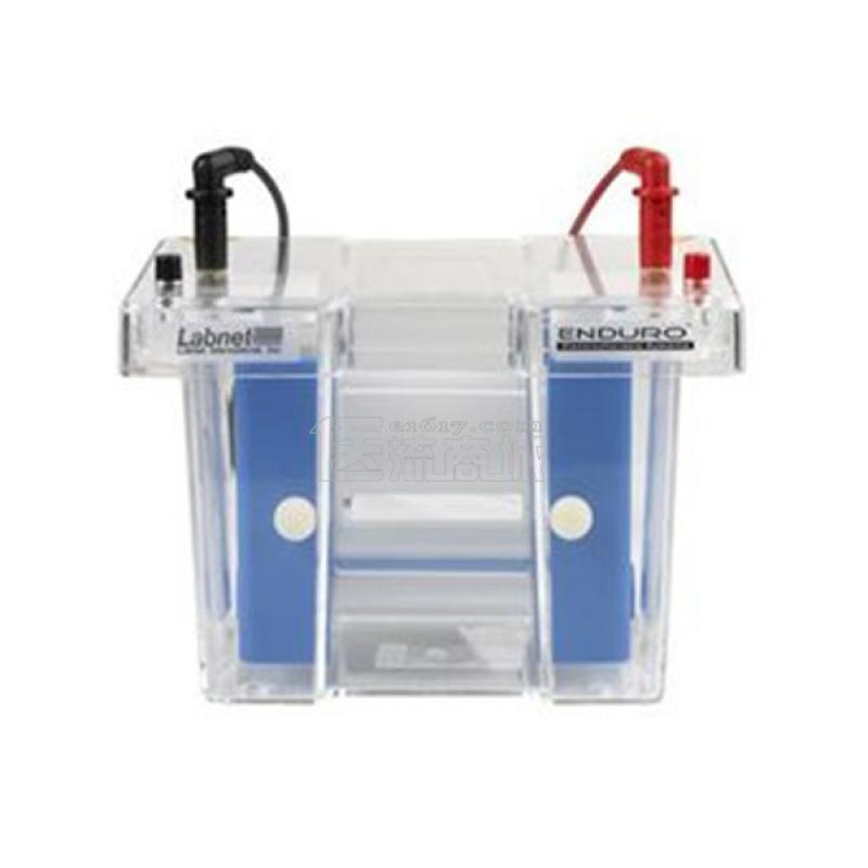 labnet E2010-PB垂直电泳槽 2块胶 48个样