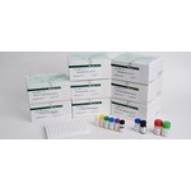 促黄体生成素(生殖内分泌激素检测系列)