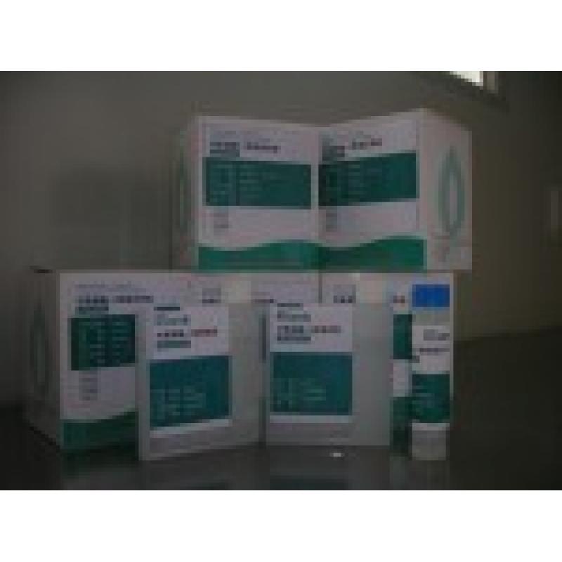 对氧磷酶-1