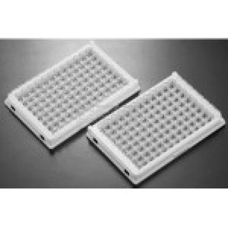 12孔酶标板条 100条/包