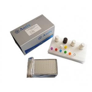 猪瘟病毒抗体检测试剂盒