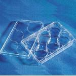 Corning康宁 24孔标准透明板 平底 表面未处理 带盖