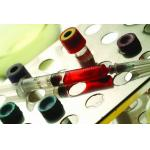 辣根过氧化物酶标记的小鼠抗兔IgG Mouse Anti-rabbit IgG/HRP 0.1ml