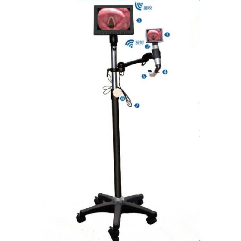 国健 ZX-KSHJ可视喉镜立式