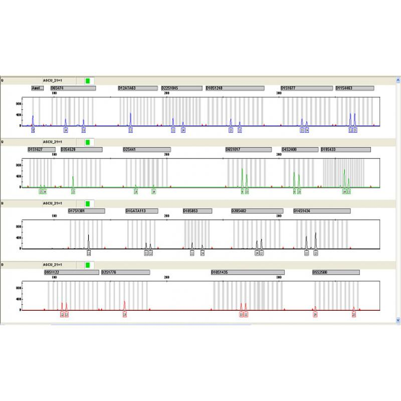 AGCU Mini-补充位点荧光检测试剂盒