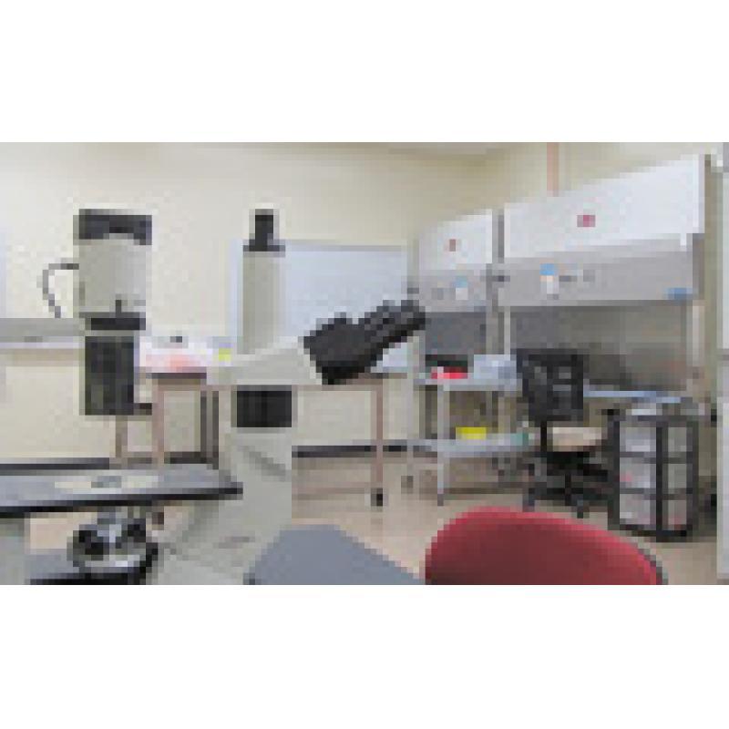 BSL-1实验室 BSL-2 和BSL-1实验室 生物安全实验室设计方案和工程实施