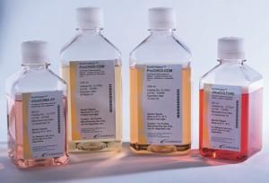 现货促销  :  无血清造血细胞培养基