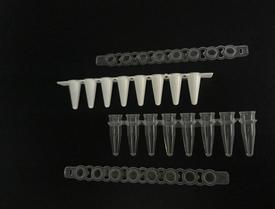 BEEBIO PCR管