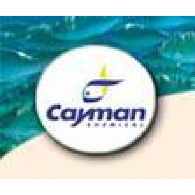 nNOS (rat) Antisense Probe Template(Cayman)
