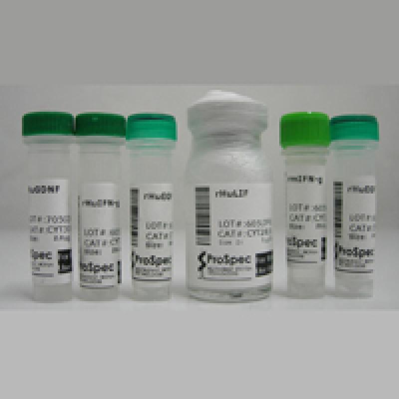 Trypsin inhibitor,soybean 胰蛋白酶抑制剂