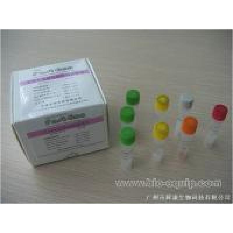 lamp通用DNA扩增试剂盒