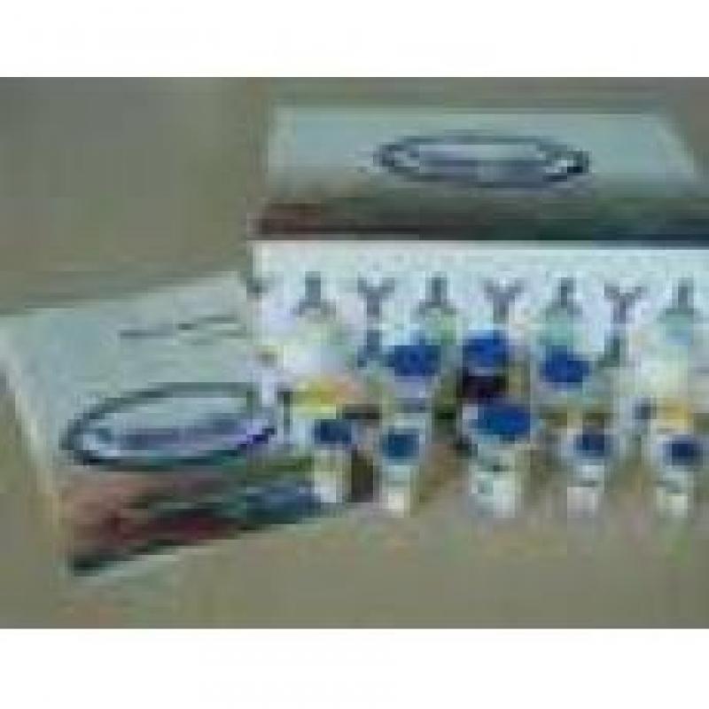 超敏S-P(鼠/兔)试剂盒(BTC)