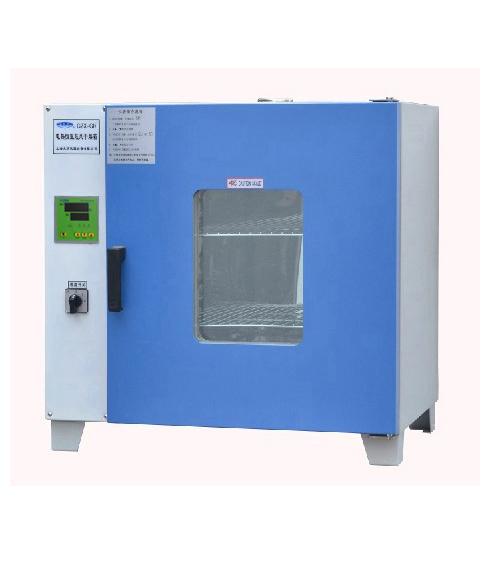 龙跃GZX-DH系列电热恒温干燥箱 GZX-DH·300-B