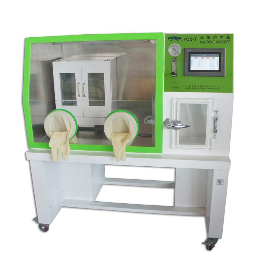 龙跃 YQX-T型厌氧培养箱
