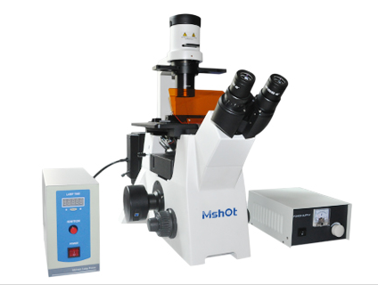 mshot MF53倒置荧光显微镜