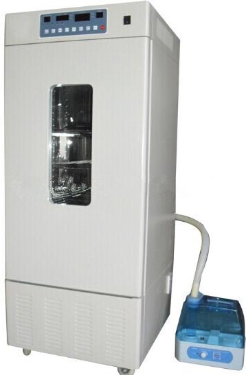 ZFX-250种子发芽箱(催芽箱)