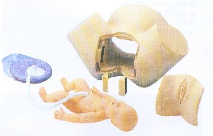 分娩综合技能训练模型