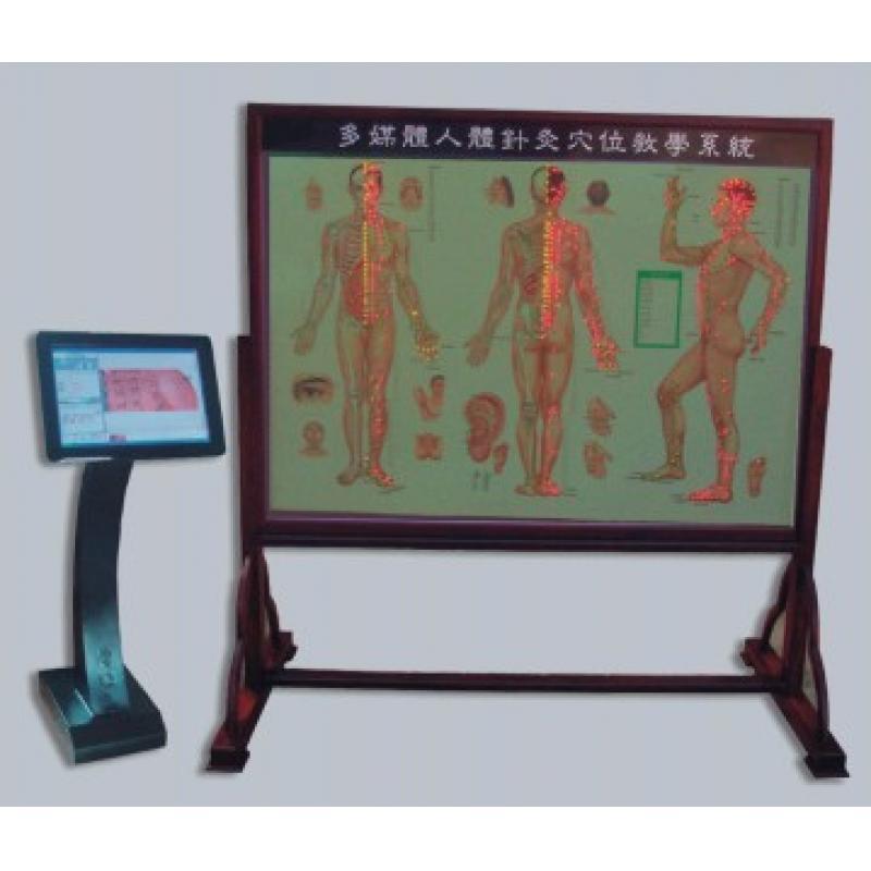多媒体人体针灸穴位交互数字平台WST-19M