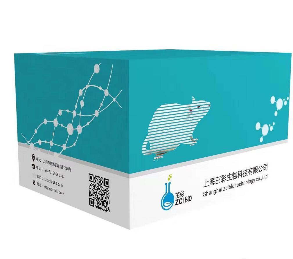 大鼠L选择素L-SelectinELISA试剂盒