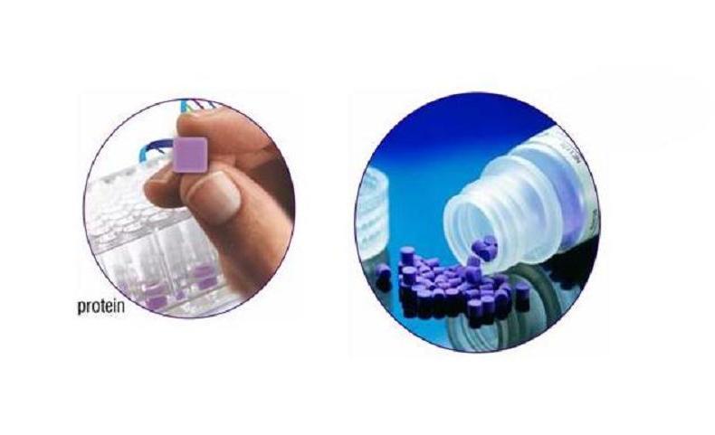 Pierce Y-PER 6xHis融合蛋白柱式纯化试剂盒