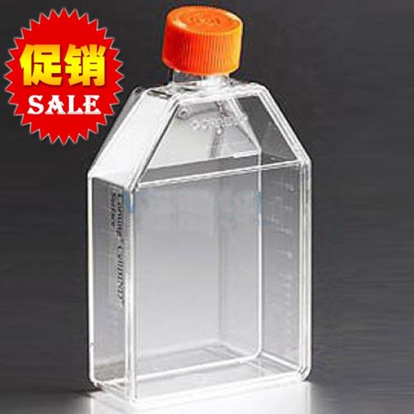 康宁Corning25c㎡直角斜颈密封培养瓶 TC表面 大包