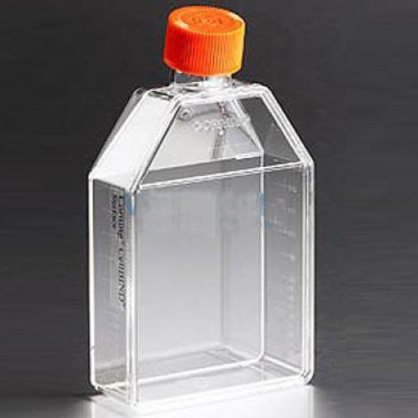 康宁Corning150cm²直角斜颈培养瓶 正方斜口 未表面处理 透气盖 聚苯乙烯 灭菌 大包装 5个/包