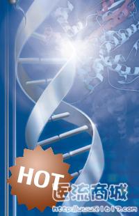 AMV逆转录酶 Reverse Transcriptase