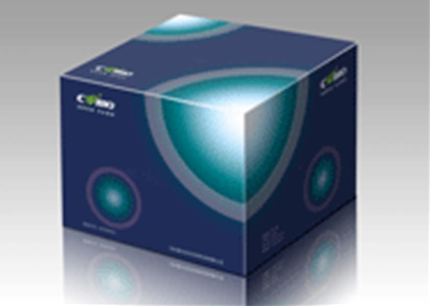 质粒小提试剂盒/Plasmid Mini Kit 50次