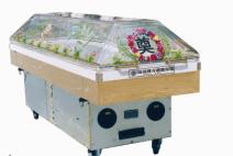 LZ-04冷藏瞻仰棺